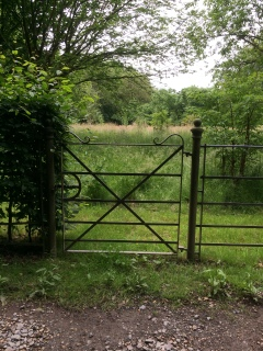 Garden gate, Sarrett