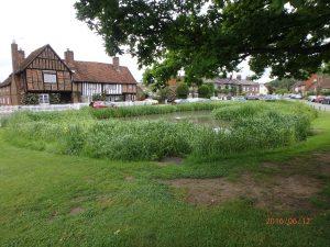 Aldbury village pond