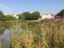 Rottingdean village pond
