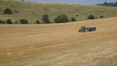 Harvest at Standean Bottom