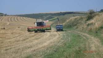 Harvest at Standean Bottom