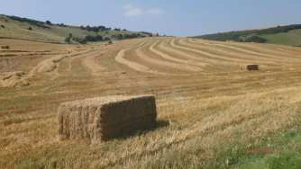 Hay bales, Standean Bottom
