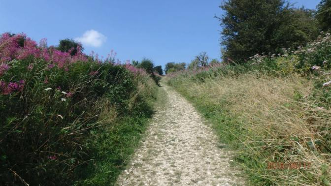 Castle Hill National Nature Researve