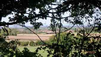 Chinnor through the trees