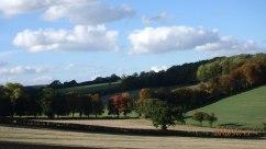 Chartridge Ashridge valley
