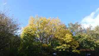 Blue sky thinking