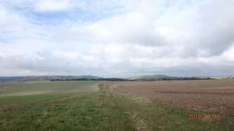 New Timber Hill & Devil's Dyke