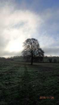 Footpath to Nettleden