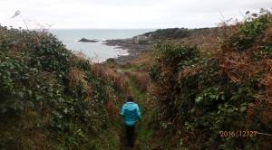 Descent-to-Kenneggy-Sands-&-Prussia-Cove