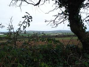 Godolph-&-Tregonning-Hills-from-Woodstock