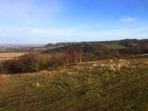 Aston Rowant Nature Reserve from Watlington Hill