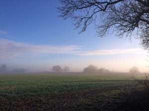 Great Hampden fields in December