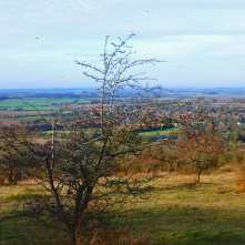 Watlington from Watlington Hill