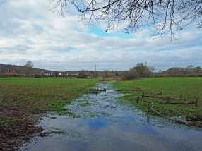 River Misbourne at Little Missenden
