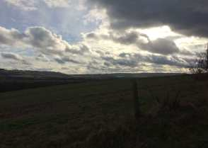 Whipsnade Downs and Ashridge from Totternhoe