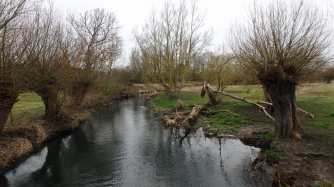 River-Thame-Chearsley