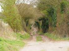 Spring lanes