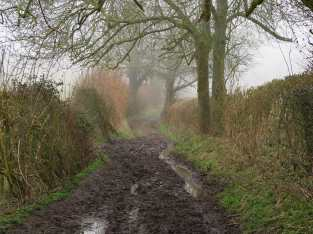 The path more travelled