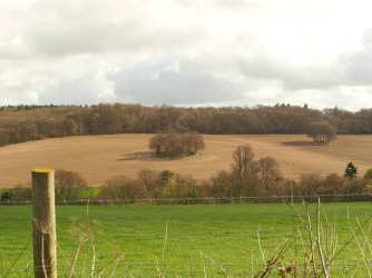 Chess Valley from Lane Wood