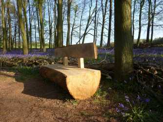 Dockey Wood seat