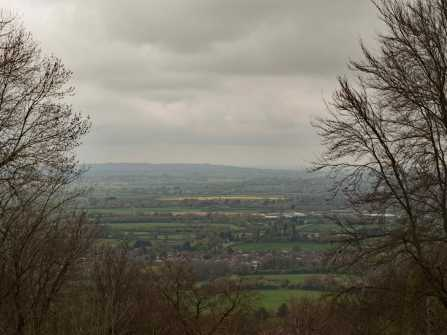 From Wendover Woods