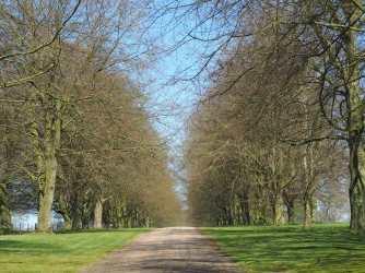 Main Drive, Chequers