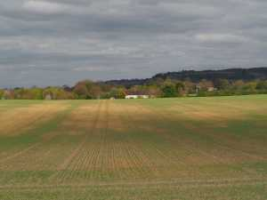 Springhill Farm, Watlington