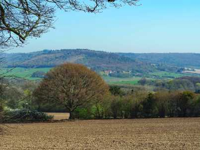 The Misbourne Valley towards Wendover Woods