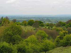 The-Vale-of-Aylesbury-from-Pulpit-Hill