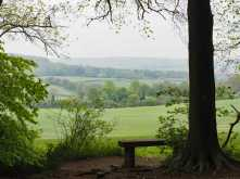 A-place-to-pause,-Wendover-Woods
