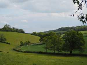 Pednor-Bottom,-Chartridge