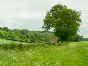 Fillingdon-Farm,-Piddington