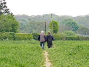 Walking-companions