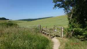 Upper-Gatehampton-Farm