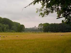 Gorhambury-estate-towards-St-Albans-cathedral