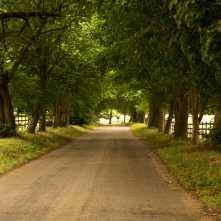 Hertfordshire-Way,-Gorhambury-Estate,-St-Albans
