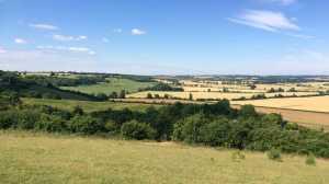 The-height-of-summer,-Sundon-Hills