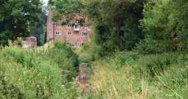 Shafford Mill, through-the-tress