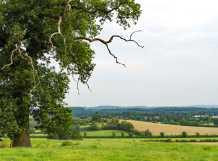 Central-Bedfordshire