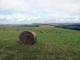 Firle-Beacon-from-Telscombe