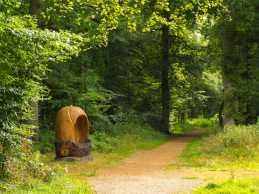 Penn-Wood,-Buckinghamshire