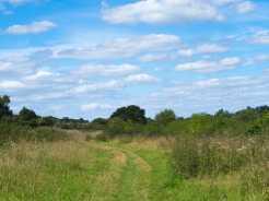 Summer-afternoon,-Goldhill,-Buckinghamshire