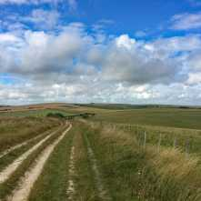 The-South-Downs-Way-in-Summer,-Telscombe