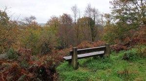 Abbeyford-Woods,-Brightley