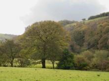 Lorna Doone Farm, Parracombe