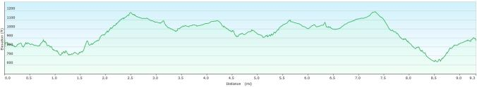 Parracombe walk profile