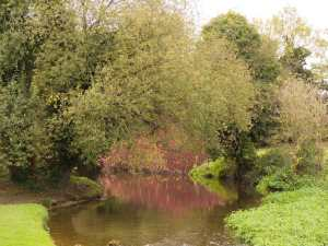 River-Lee,-Wheathampstead