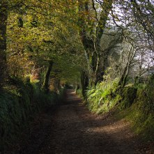 The-Path-to-Woolhanger-Ford
