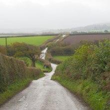 Webber-Hill,-Chichacott