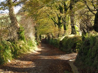 Woolhanger-Lane